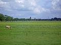 Moordrecht 30mei2006.jpg