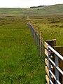 Moorland fence - geograph.org.uk - 476029.jpg