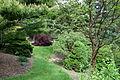 Mount Airy Arboretum - DSC03795.JPG
