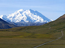 Denali seen through a green field