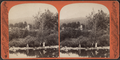 Mount Pleasant, Catskill Mountains, from Robert N. Dennis collection of stereoscopic views 2.png