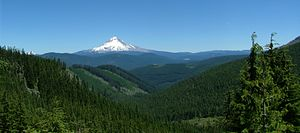 Mount Hood National Forest - Snow-covered Mount Hood in the Mount Hood National Forest