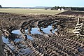 Mud, Glorious Mud^ - geograph.org.uk - 1190617.jpg