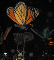 Muses07Butterflies cropped.png