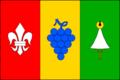 Němčičky BV CZ flag.png