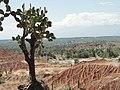 N2 Tatacoa desert near Neiva (Columbia).jpg