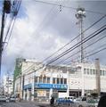 NHK-Kochi.png
