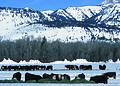 NRCSWY02021 - Wyoming (6907)(NRCS Photo Gallery).jpg