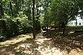 Nacogdoches August 2017 35 (Lanana Creek Trail).jpg