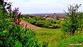 Nakło nad Notecią - Widok z okolicy wzgórza wodociągowego w kierunku doliny Noteci - panoramio (1).jpg