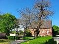 Natudenkmale Maulbeerbaum 1 und 2 Caminchen (3).jpg