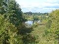 Natura w okolicach Różana - panoramio.jpg