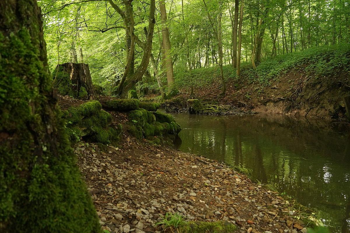 H slachwald wikipedia for Habitat stuttgart