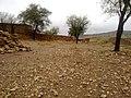 Navidhand last 176 - panoramio.jpg