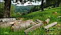 "Near ""Meltingerberg"" - panoramio.jpg"