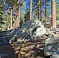 Near San Jacinto Peak, CA 2-7-14 (16295938418).jpg