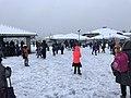 Neige à Saint-Maurice-de-Beynost (Ain, France) - décembre 2017 - bataille de boules de neige.JPG