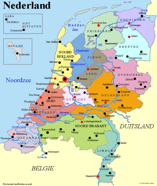 Брошенные в автобусе вещи и икона: в Нидерландах задержали 65 молдаван, просивших убежище