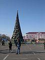 New Year's Tree Taraz.jpg