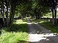 Newbarns Track - geograph.org.uk - 877311.jpg