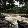 Non Yang, Nong Sung District, Mukdahan, Thailand - panoramio (3).jpg