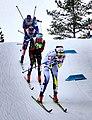 Nordic World Ski Championships 2017-02-26 (33082689622).jpg