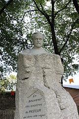 buste de Louis Pasteur