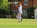 Nuthurst CC v. The Royal Challengers CC at Mannings Heath, West Sussex, England 28.jpg
