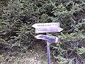 Obertelfes - panoramio (3).jpg
