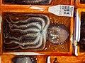 Octopus (8012561159).jpg