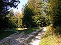 Odbočka k lesnej škôlke - panoramio.jpg
