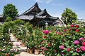 Ofusa-kannon Kashihara Nara pref Japan01s3.jpg