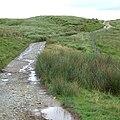 Old Drover's Road towards Soar-y-Mynydd, Ceredigion - geograph.org.uk - 508764.jpg