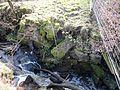 Old bridge abutment, Whin Gaw, Woodhill Burn, Knockentiber, Ayrshire, Scotland.jpg