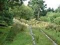 Old railway line - geograph.org.uk - 649498.jpg