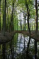 Oldenzaal, reflections - panoramio.jpg