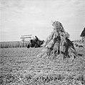 Oogstplaatjes (hooi en boerderij), Bestanddeelnr 934-5523.jpg