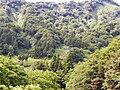 Oshimaku Odaira, Joetsu, Niigata Prefecture 942-1103, Japan - panoramio (5).jpg