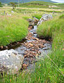 Owengin tributary - geograph.org.uk - 200178.jpg