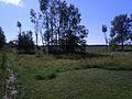 Põlluäär Liiva-Putlas Saaremaal.JPG