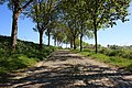 Paddestraat, Velzeke, Zottegem 02.jpg