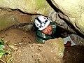 Padlás-barlang.jpg