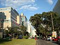 Panorama Hospital Clinicas SaoPaulo.jpg