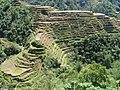 Panorama der Reisterrassen von Banaue, Philippinen.jpg