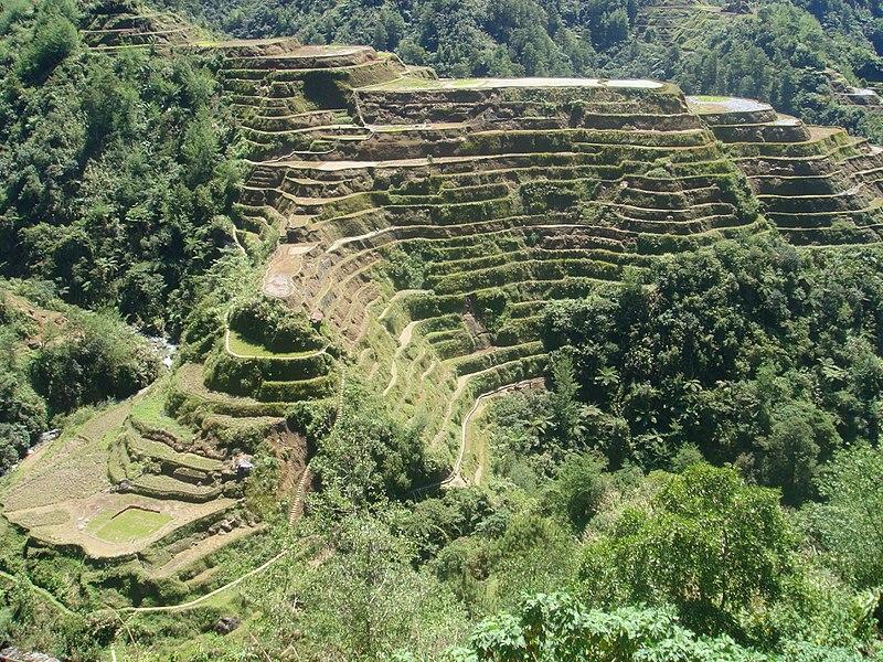 Datei:Panorama der Reisterrassen von Banaue, Philippinen.jpg