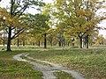 Panoramio-39827104.jpg