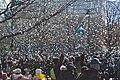 Parade (25286153257).jpg