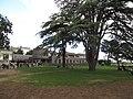 Parc du château d'Ancenis.jpg