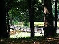 Park in Klimkówka bk09.JPG