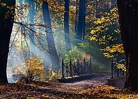 Pont dans un parc de Pszczyna, en Haute-Silésie. (définition réelle 3378×2416)